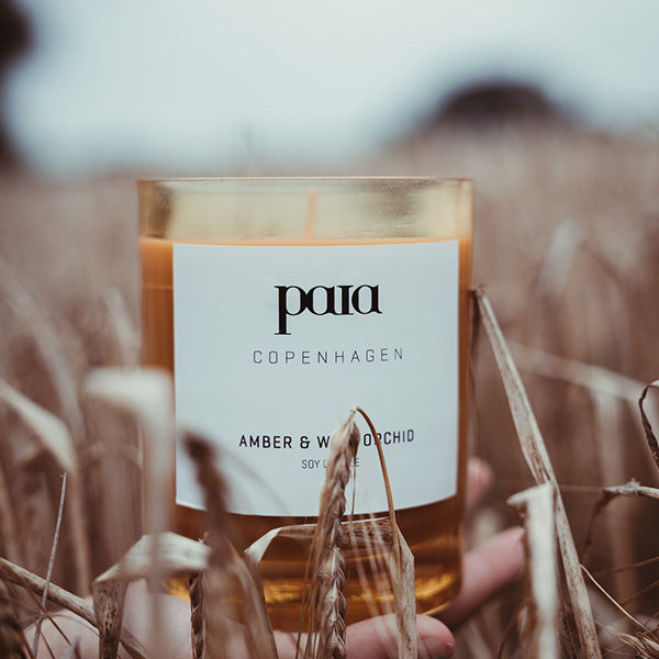 paia copenhagen amber wild orchid not the girl who misses much