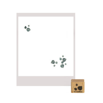 stempel-cats-on-appletree-fliegende-blaetter