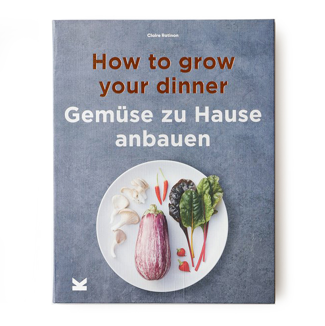 gemuese zu haus anbauen buch not the girl who misses much
